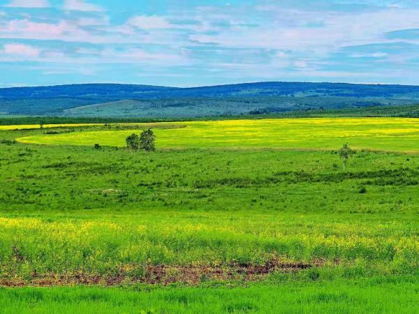 最美风景在路上 | 环驾中国——在内蒙古感受草原风情