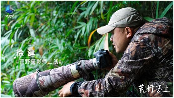 用镜头拥抱自然 用荒野致敬生命