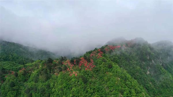中国举重队的金牌里,藏着安徽深山里的秘密