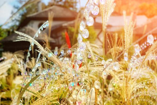 日本箱根旅行必选:玻璃之森 圆你的公主梦