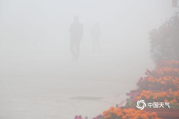 """山东威海大雾锁城 能见度不足百米市民""""摸索着前行"""""""