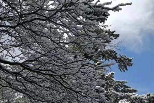陕西华山景区迎来降雪