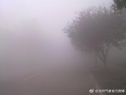 大雾致安徽10条高速通行受阻 明日大别山区仍有雾