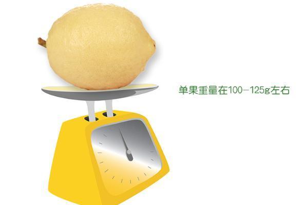 清新维C,上邮政919,享受原汁原味!