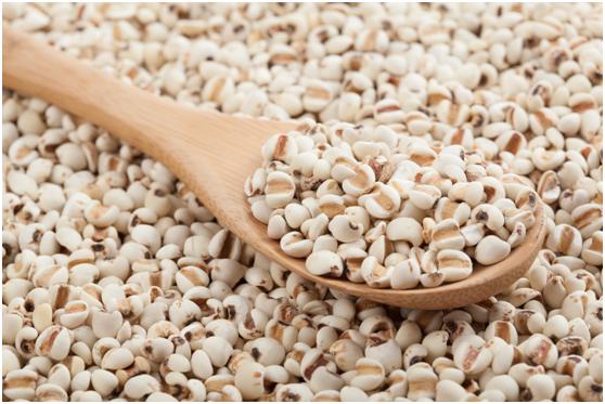 轻食代餐红豆薏米粉,让你远离湿态