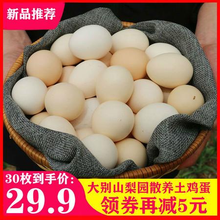 别总吃白水煮蛋!邮乐网教你!这样做鸡蛋营养翻倍