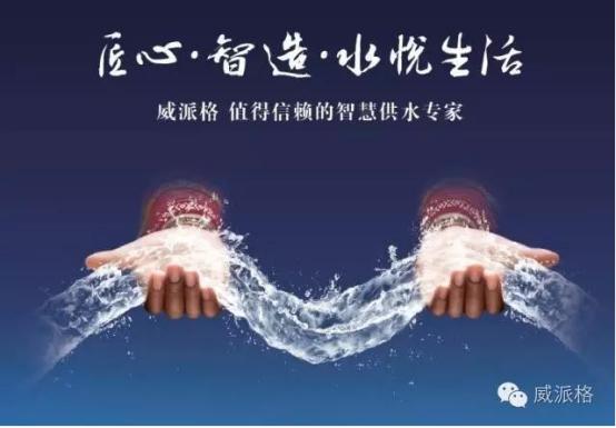 """威派格实力认证 参与""""十三五""""国家科技重大专项水专项研究"""