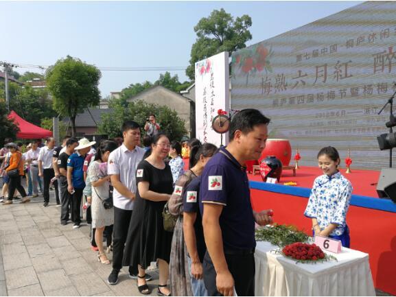 第四届梅蓉杨梅节开幕,新零售示范村启动在即