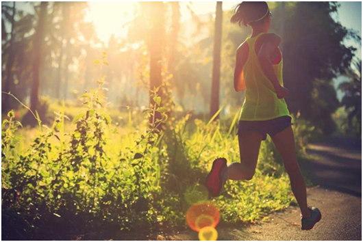 嶝柏仕体育:打造个性化健身运动,推动体育产业多元化发展