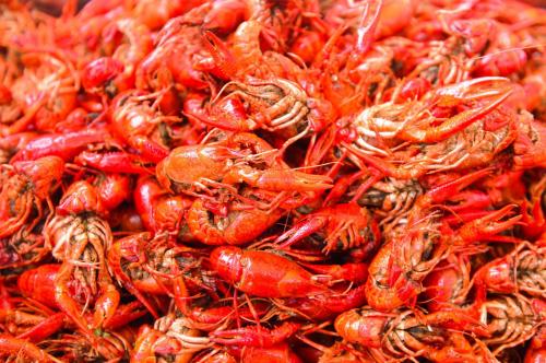 石淙花海龙虾节 相约绿水青山尝美味