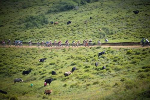 全地形、乐趣足!和UCC运动自行车Ridge 一起征战甘南藏地传奇