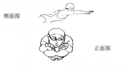 夏日必备运动——游泳,美国爱康百乐福教你花式动起来!