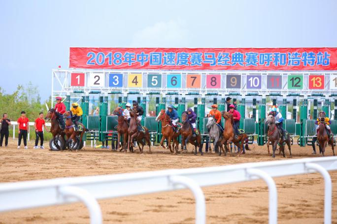 第五届内蒙古国际马术节系列活动—— 全国少数民族运动会选拔赛 · 中国速度马经典赛(呼和浩特站)雨中开赛