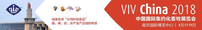 全球畜牧业的中国门户VIV China:如何助力中国畜牧业发展的新阶段?