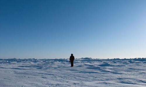 冰箱设计迎来冰川时代,美的冰川银引领北欧极简美学