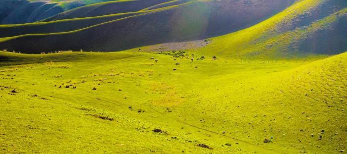 途牛:伊犁旅游舒适季延长 暑期避暑游持续火爆