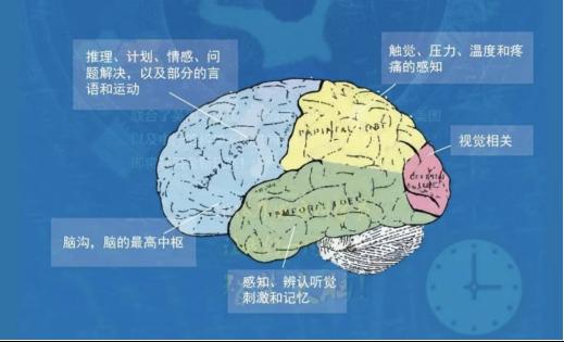 暑假必去百场阅读活动,中国童书博览会阅读星球即将启幕