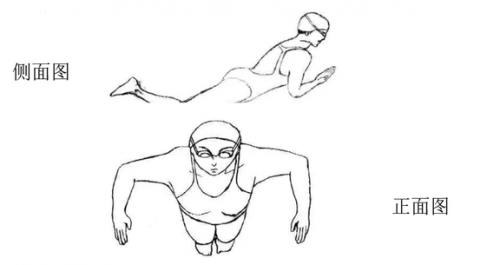 四种游泳姿势简笔画