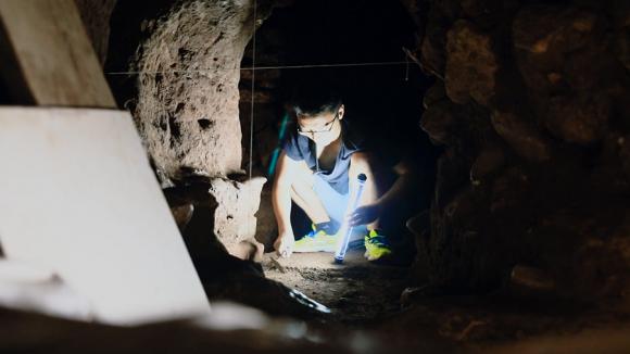 《我的青春在丝路》中国考古人走向世界舞台,揭秘神秘玛雅文明