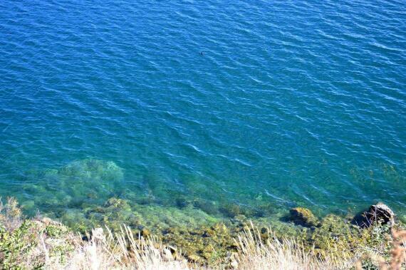 极致水源地造就中脉冷泉极致养生饮用水