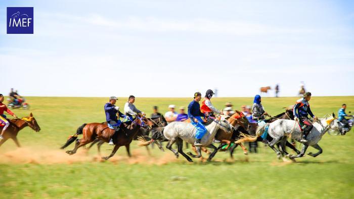 第五届内蒙古国际马术节巴彦淖尔站及呼和浩特站系列活动精彩上演