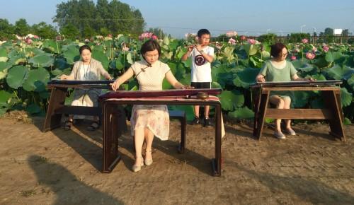 古筝,箫,笛中国传统乐器演奏;太极剑,太极拳表演;少儿莲花古诗词朗诵