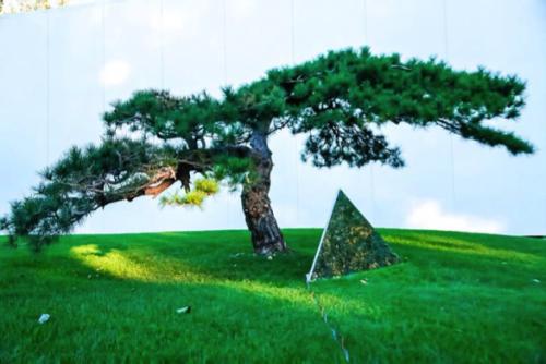 """松美术馆开启松间有""""乐""""周年艺术节,特邀张浩天演奏《月光》庆生"""