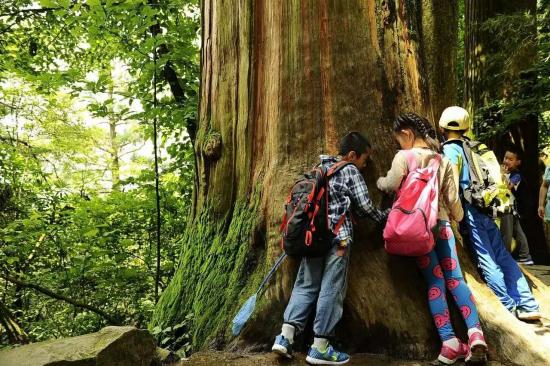 陈鱼海:构建心中的教育生态圈
