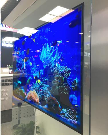 进军西安国美 OLED开始向全国布局