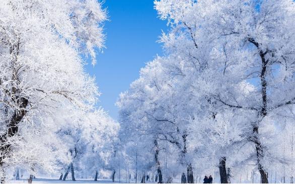 充分聚合优质旅游资源 吉林市打造世界级冬季旅游目的地