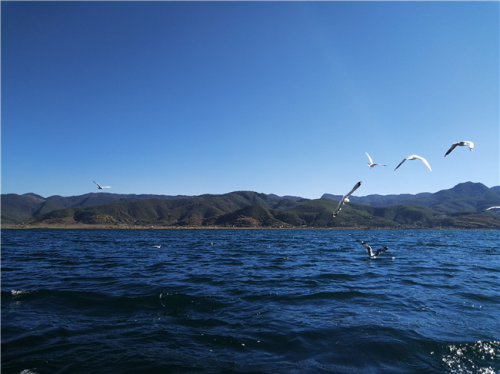 第八届四川国际自驾游博览会 环湖游览精品路线