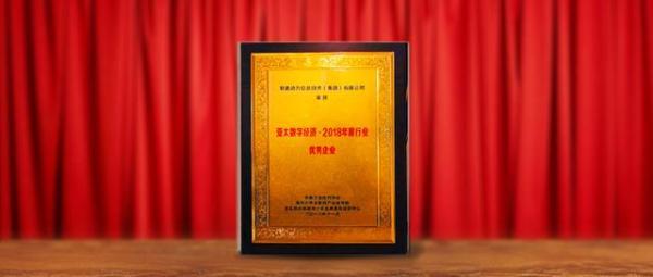 2018亚太企业数字经济发展年会:软通动力获优秀企业奖