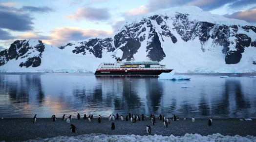 洽洽蓝袋登陆南极,品牌全球化布局持续升级