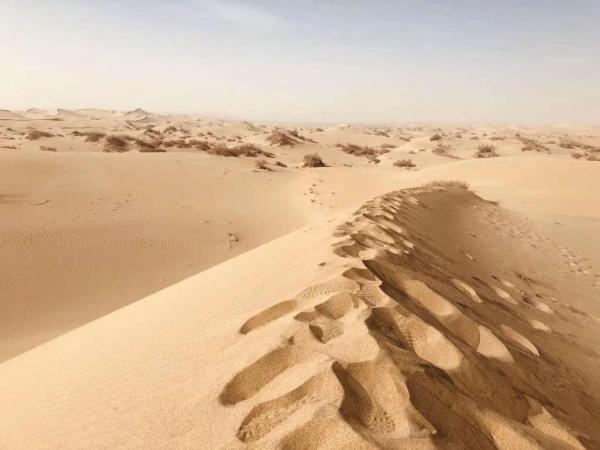 塔克拉玛干沙漠闯进一伙不明人群