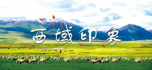 咩~北京维景国际大酒店爆款自助!超赞的烤全羊来了!