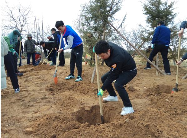 威高员工生活:威高建工集团举办第三届公益植树活动