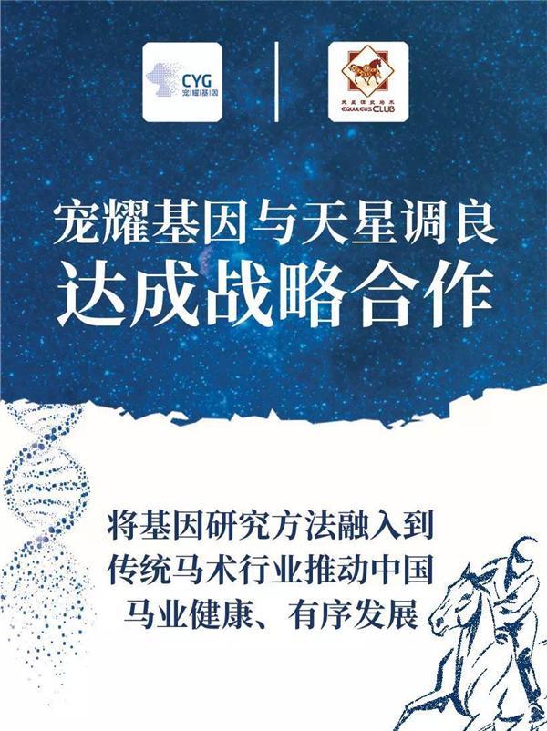 宠耀基因与天星调良国际马术俱乐部正式达成战略合作