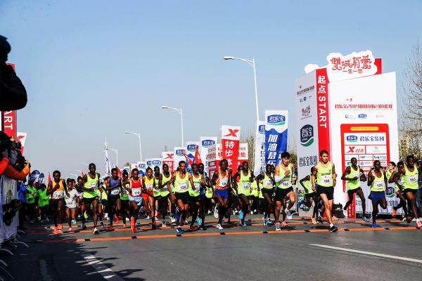 第十三届郑开国际马拉松鸣枪开跑 特步倾情助力国人竞速