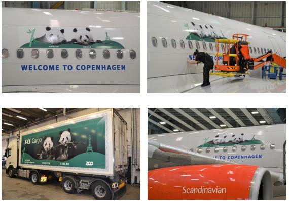 北欧航空保驾护航,助力大熊猫抵达丹麦新家