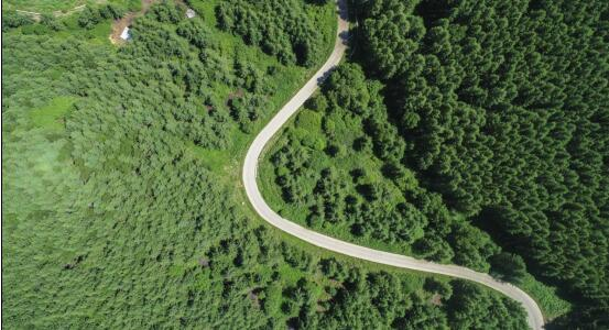 翠云山森林风景区深度挖掘自然资源和文化资源,推出山地户外,亲子家庭