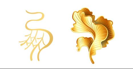外形上,整个胸针由三瓣经过创意变形的银杏叶组成,整体外形灵感来源图片