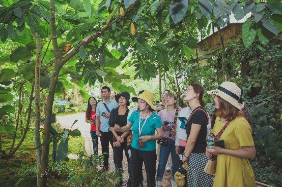 扶荔宫开园三周年:携植物医生共同保护生物多样性