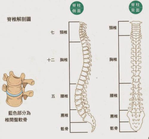 警惕!睡沙发竟然对脊椎的伤害这么大