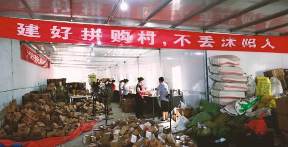 """苏宁拼购818公布""""拼购村""""评选标准,首批9月挂牌"""