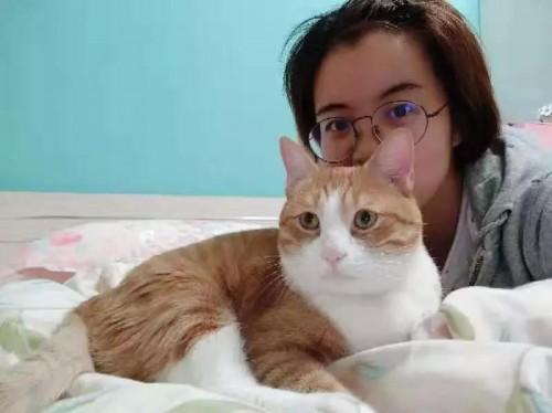 土巴兔《一席之地》,8小时能否顺利为流浪猫打造爱的空间?