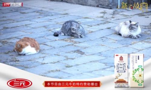三元故宫牛奶再度进宫,《上新了·故宫》第二季引爆期待
