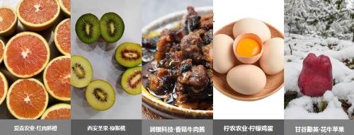 """万商云集联合客户线上营销,""""双11""""节前震撼上线!"""