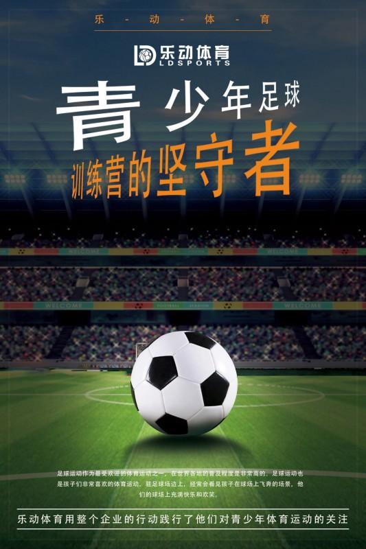 乐动体育——青少年足球训练营的坚守者