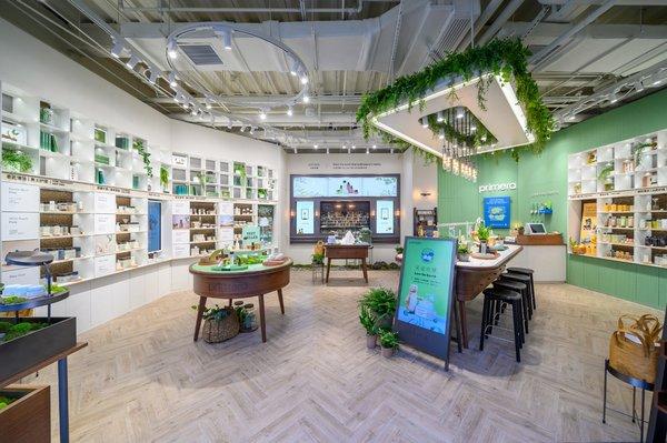 primera 芙莉美娜中国首家零售体验店登陆上海