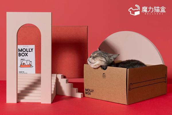 宠物服务定制化,魔力猫盒模式创新更贴心